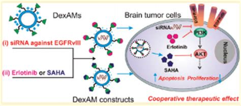 Research articles on brain cancer